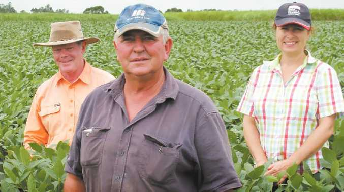 Alan Munro, centre, is undertaking research and development on his farm at Woodford Island, together with Dr Bob Aitken, left, and Dr Natalie Moore.