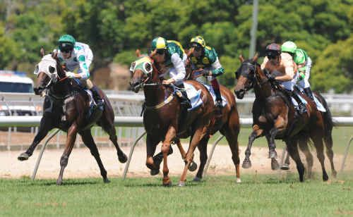 Josh Jones pushes Darshan Joh to the lead to take out race 3 in Grafton last month. The fun starts again today.