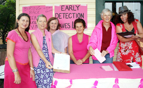 In the pink: Byron Mayor Jan Barham (left) attends a rally in Byron Bay last week to protest the removal of the mobile breast screening vans from the Byron/Ballina areas. Barb Pinter (second left) shows off a petition which will be sent to the Minister for Health.