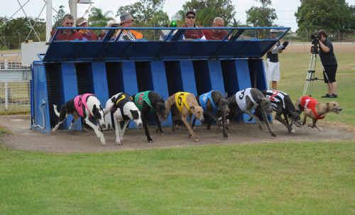 Best Eight race at Thabeban Park on Saturday.