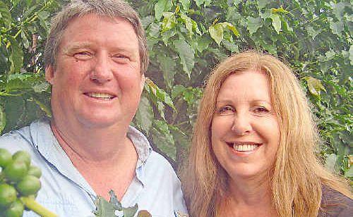 Greg and Janice Jansen amongst their 15,000 award-winning coffee trees.