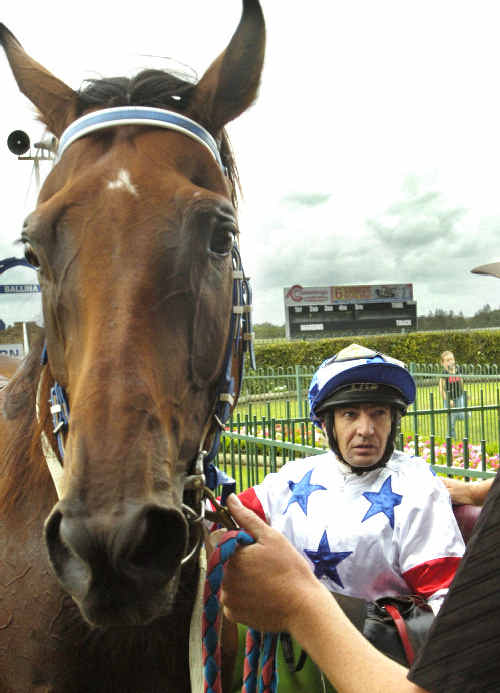 Darron Coleman with Star of Amy after winning at Ballina on Saturday.