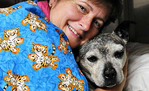 """Vet nurse Judy Allen rescued """"Mary"""" from the swollen Mary River yesterday morning. The old Staffordshire terrier was found clinging to the river bank just below Gympie Veterinary Services near Kidd Bridge."""