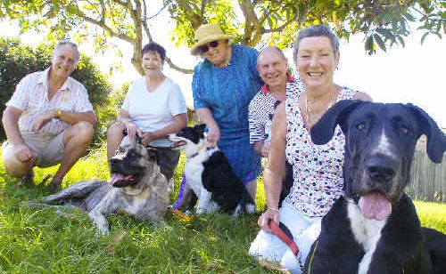 Campaigning for leash-free times for dogs at Ballina's Angels Beach are residents (from left), John and Elizabeth Fletcher with Buffy, Carol Piggott with Jess, and Jim and Merrilyn Roche with Zilla.