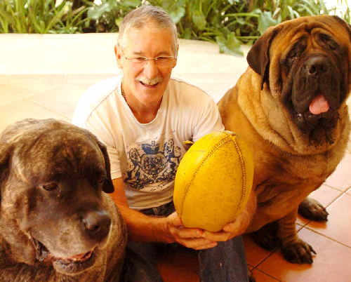 John Rantall with his two English mastiffs Maleah and Albert.