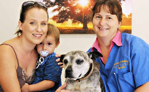 """Gypsy, otherwide known as """"Mary"""", owner Brooke Thomas and son Jake, with rescuer, vet nurse Judy Allen."""