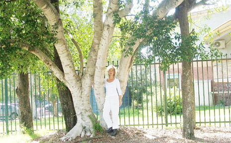 Teresa Heal stands in front of one of the fig trees earmarked for removal.