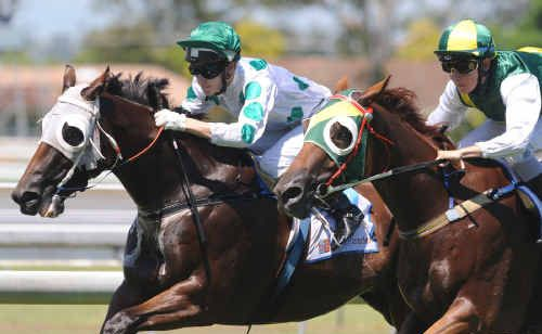 Josh Jones pushed Darshan Joh ahead of Magic Country. More fun is planned today at Grafton.