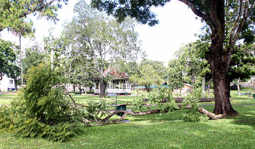Council workers were on the job early yesterday morning removing this jacaranda branch which came down in Memorial Park over the weekend.