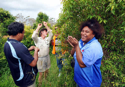 Kathryn Apelis from Papua New Guinea gets the full flavour of some aniseed-scented native plants being grown by Russell Glover from Woolgoolga Rainforest Products. TREVOR VEALE
