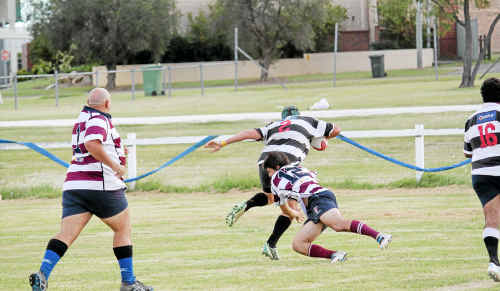 Mitchell Lamb on his way to scoring a try for the Water Rats in A-grade against the Casino Bulls in a friendly trial on Saturday.