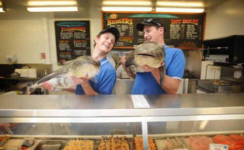 Nathan Hambly and Beau Mullin show off some of the massive cobia at Naeco Blue in preparation for the Easter rush on seafood.