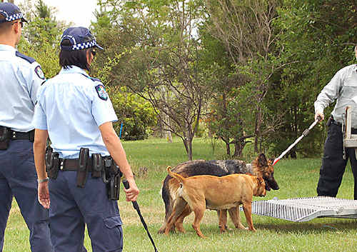Gympie Regional Council has said there is no tolerance for dogs that bite.