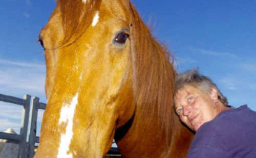 Helping to heal: Cathy Gordon, of Ballina, with her horse Whaler, which she says saved her soul after the terrifying ordeal of the Port Arthur massacre in 1996 had her considering suicide.