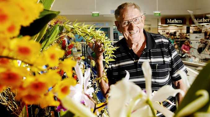 Graham Gamble of Goonellabah took out the Champion and Reserve Champion Species prizes at last year's Northern Rivers Orchid Species Society annual show.