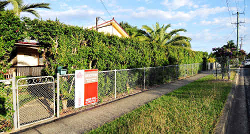 Clissold House: Could this heritage-listed Coffs Harbour house become our new museum?