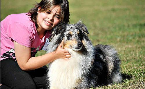 A dog show will be a feature of Macksville Show on Saturday.