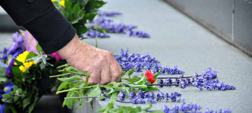 Anzac spirit: Purple salvia took the place of red poppies at the cancelled Commemoration Service at Normanby Hill Remembrance Park Southside on Anzac Day. More than 250 people turned up to pay their respects to the fallen.