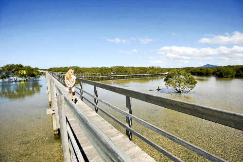 The Urunga lagoon boardwalk will soon traverse the village to beach section in its entirety.