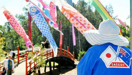 Japanese kites added plenty of colour to the Japanese Festival of Children's Day.