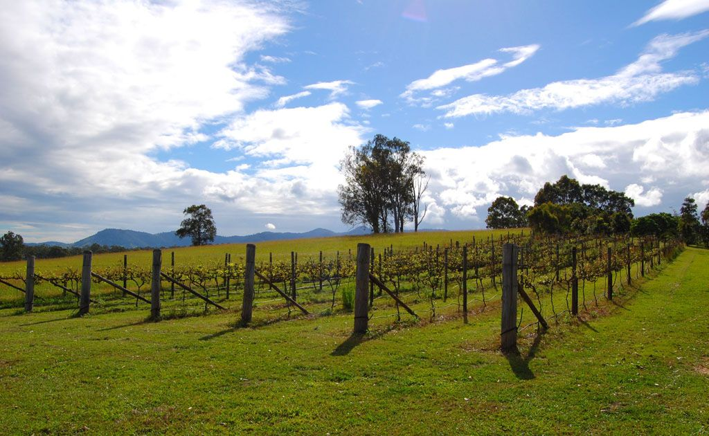 Wine enthusiasts will relish sun-soaked vineyards.