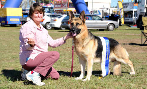 Top dog: Maryanne O'Brien and Dreamweaver took out best of breeds in Group Five at the Pedigree dog section.