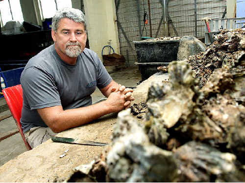 Terranora Lake Oysters owner Cliff Verdich said more than 2400 oysters valued at $2000 have been stolen from several of his leases in the Terranora Broadwater.