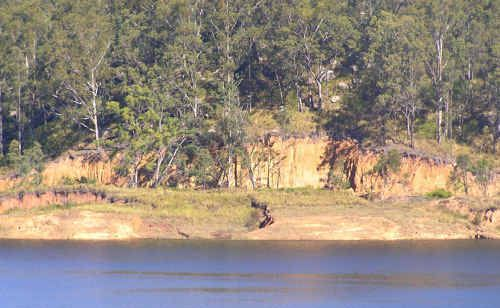 A concerned Clarence Valley resident sent The Daily Examiner this image showing a landslip at the Shannon Creek Dam.