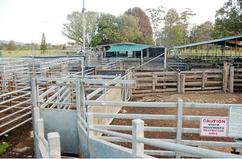 Urgent safety issues need to be addressed at the Macksville saleyards.