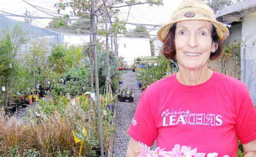 Claire Cunningham prepares for the Garden Extravaganza.