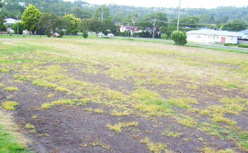 BILL HARRIS FIELD: Before the returfing ...