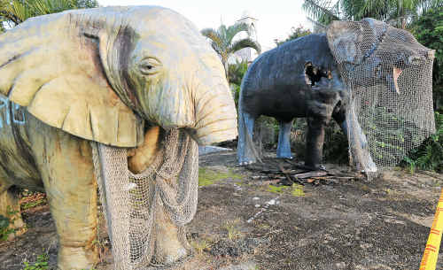 Vandalised: Woolgoolga's Raj Mahal elephants have been further damaged by fire.