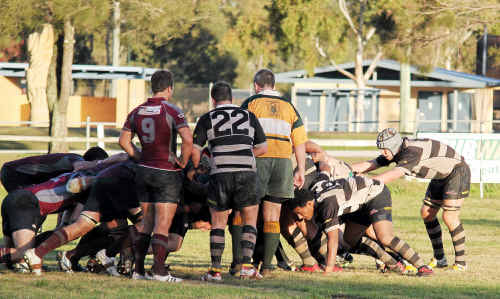 The Water Rats and Bears pack down in the scrum last Saturday at Risdon Oval. They play Rangers this Saturday.