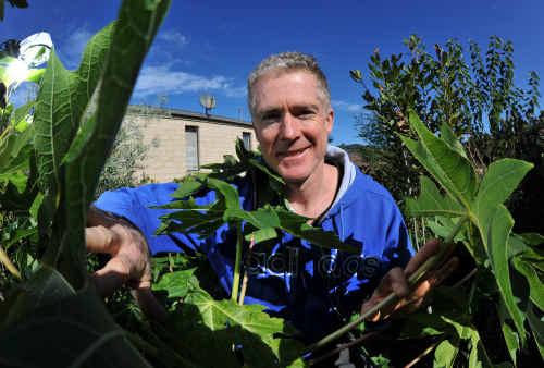 Steve McGrane in his sustainable garden at Korora.