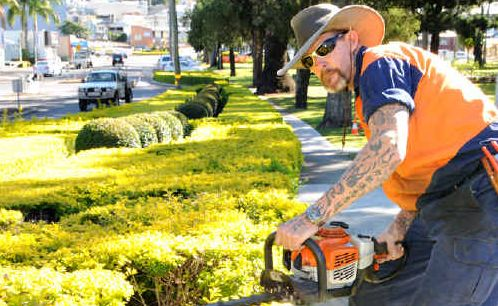Gympie Regional Council CBD Parks and Gardens foreman Garry Shipp maintains the hedges along the edge of Memorial Park and River Road.