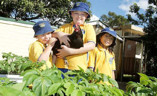 In the Crystal Creek School Vegetable Garden was Nat Davis, from Year 2, Riley Coleman, from Year 5 and Ayu Horobin from Year 2.