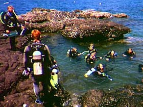 Scuba diving holiday deals