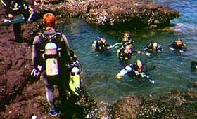 Enjoy a scuba diving holiday.