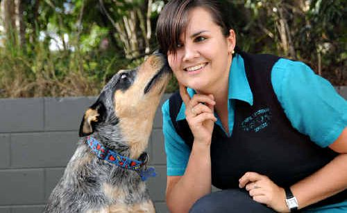 Emma Dakin gets a kiss from 15 month old Ace who is thriving on correct obedience training.