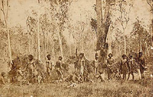 Some of Lismore's original inhabitants.