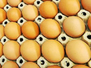 Drought to force up price of eggs