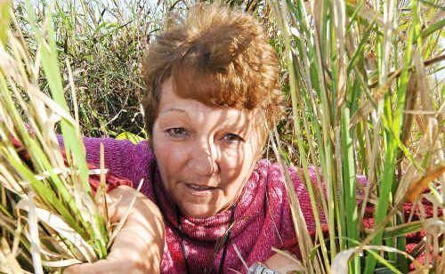 Bargara resident Christine Lowrie has had enough of the unkept Bargara Beach Estate.