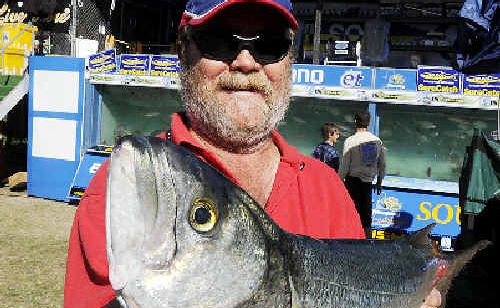 RIGHT: Graham Duffy, from Corlette, near Port Stephens, didn't win the day with this tailor, but had more luck with his teraglin, landing the biggest catch of the week.