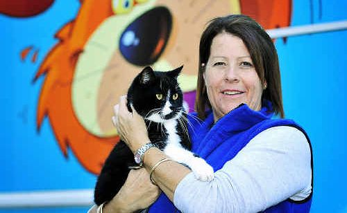 RSPCA Noosaville refuge manager Nicole Cleary launches the Weapons of Mass Production cat desexing campaign.