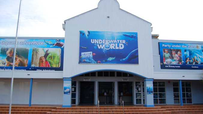 UnderWater World is located at The Wharf on Parkyn Parade in Mooloolaba.