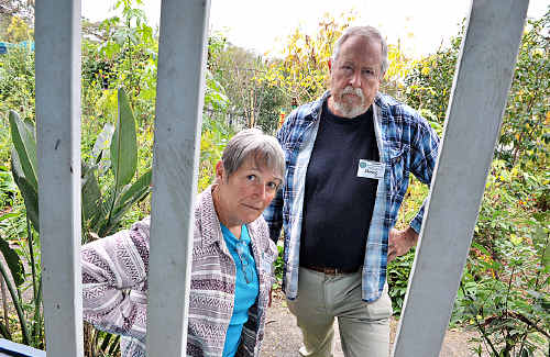 Doug and Linda Mahony are devasted by the vandalism at Yandina Community Gardens.