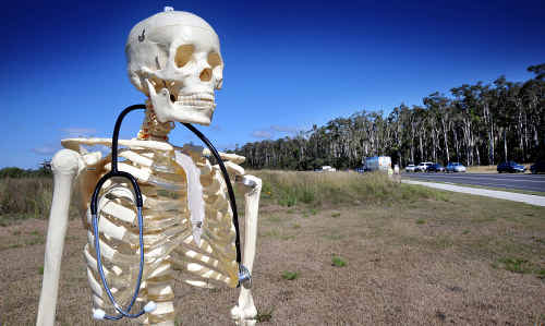 A model skeleton keeps a vigil on the site of the proposed Kawana Hospital as dozens of people attended yesterday's petition hand-over.