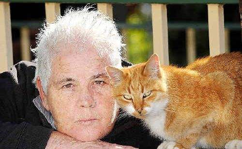 North Lismore resident Lynda Saville and her cat Freddy are missing their companion cat Ralph after he was kidnapped and dumped across town. The heartless act was compounded by one of its perpetrators providing false information about where they'd dumped Ralph.