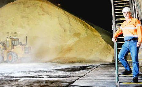 Chris Hair in the Bundaberg Port bulk sugar terminals.