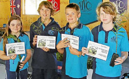 "Students from Mary Valley State College receive a free tree and a certificate for their efforts in reducing their carbon footprint. Pictured from left are Laura Sharman, Year 6, Dominic Kurtz, Yr 6 and the school's ""green champion"", Tremayne McCarthy, Yr 6 and Kaitlin Knox, Yr 7."